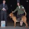 higgins-bow-and-2nd-major-new-champion-at-13-mos-greenville-sc-22008.jpg