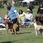 dogshowlompoc0191
