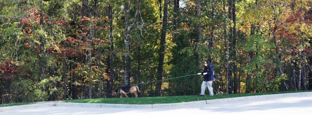 Price & Molly trailing October 2011